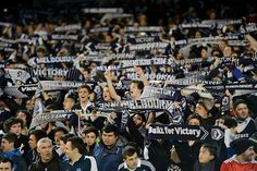 Melbourne Victory fans at the MCG. League News, My Boys, Liverpool, Victorious, Melbourne, Fans, Soccer, Football, Places