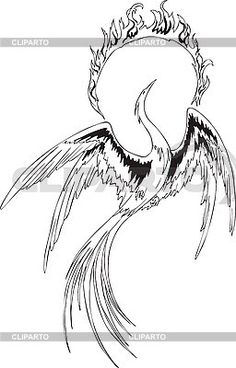 Phoenix Bird Drawings | fantasy phoenix bird - © VArts