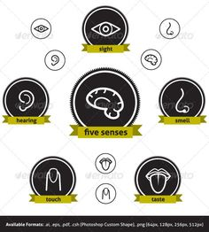 Five Senses #GraphicRiver Five Senses Vector icon set: the five senses and the human brain. Files Included: Illustrator file (.ai) Encapsulated PostScript file (.eps) Photoshop Custom Shape (.csh) Transparent PNG files in five colors and four different sizes: 512px, 256px, 128px, 64px. The set covers the five human senses: Sight Hearing Smell Touch Taste Plus: Human brain icon It is easy to edit, the layers are well organized: scale, colorize, customize the way you want. Font used on the…