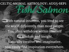 Celtic Animal Astrology - Fish/Salmon - August 5 to September 1 Spirit Animal Totem, Animal Spirit Guides, Astrology Zodiac, Horoscope, Zodiac Signs, Celtic Signs, Celtic Animals, Celtic Astrology, Animal Symbolism