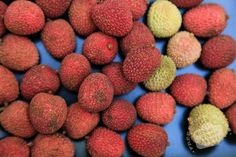 red lychee, ripe lychees, picture of lychees, fresh lychee, fruit photo, free stock photo, stock photography, royalty-free image Royalty Free Images, Royalty Free Stock Photos, Lychee Fruit, Fruits Photos, Free Fruit, Dog Food Recipes, Fresh, Pictures