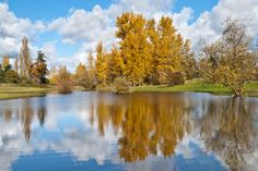 Reflections Gallery - Jeff Goulden Photography