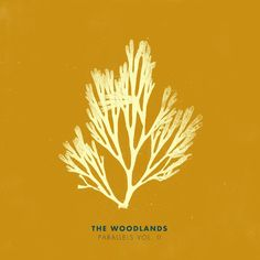 """""""Sudden Love (Acoustic)"""" by The Woodlands added to Your Favorite Coffeehouse playlist on Spotify From Album: Parallels Vol. II"""