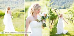 Vineyard bridal portraits. Photographs Copyright Aaron Watson Photography (please do not remove copyright when re-pinning)