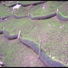 Slope Interruption - Storm water managment, silt fence replacement, vegetation establishment