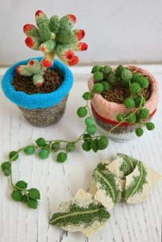 Cactus Crochet RoundUp - Sugar Bee Crafts  This is the work of Kaoru Hirota who's  professional name is Hipota. She does not sell patterns.