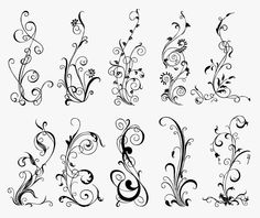 free dl for a hand drawn floral set - graphic designs