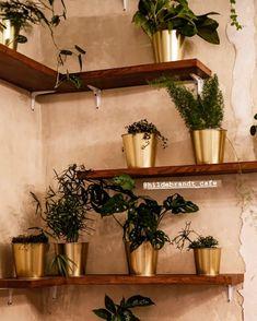 Planter Pots, Wedding