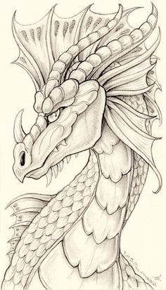2007. A dragon I drew on a train-ride home from the city (it was a shaky train). My dragons, though often scaled, are also quite mammalian in features. For more information on my Pen Sketchbook Pro...