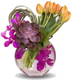 Tulips, Succulent, Orchids