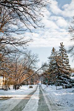 Winnipeg, Manitoba in one of many snowy scenes.
