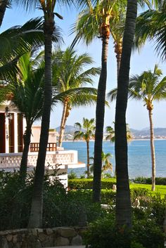 sea-of-cortez-cabo-san-lucas-honeymoon-one-and-only-palmilla-resort