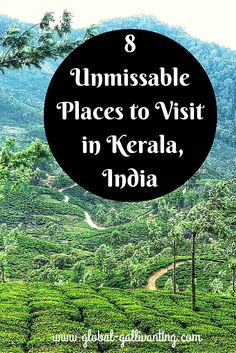 8 Unmissable Places to Visit in Kerala, India