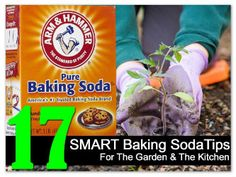 Keep this list handy for a range of tips ranging from growing sweeter tomatoes to restoring the shine to your BBQ grills.Baking soda has many household use