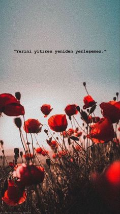 Turkish Sayings, Learn Turkish, Profile Picture For Girls, Cool Words, Quotations, Books To Read, Life Quotes, Tumblr, Wallpaper