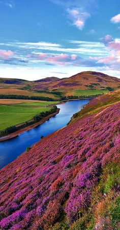 Pentland hills near Edinburgh