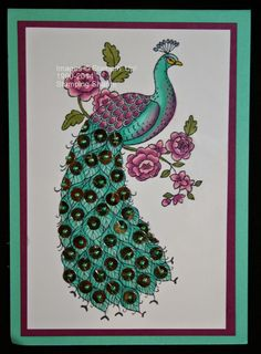 colouring the Perfect Peacock in as many colours as I can. Peacock Art, Peacock Theme, Perfect Peacock, Stampin Up Catalog, Love Stamps, Mixed Media Artwork, Stamping Up Cards, Butterfly Cards, Homemade Cards