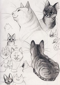 so Joiku drew my cats and it was an enlightening experience like you can actually DRAW CATS especially Hema, then I tried but uhhhhhh I can't see them as anything but hairy blobs goodbye and thank you
