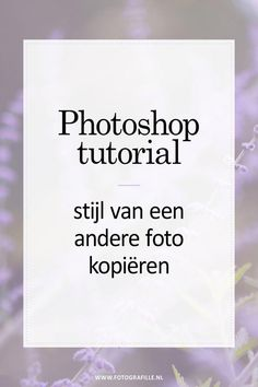 tutorial - variaties van je foto in Photoshop - Fotografille Photoshop Tutorial, Cool Photoshop, Photoshop Actions, Lightroom, Learn Photoshop, Photoshop For Photographers, Photoshop Photography, Photography Tips, Photoshop Projects
