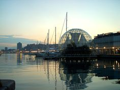 The harbour in Genova, Italy. But this beautiful city has (so) much more. The center of Genova is on UNESCOs World Heritage list. If you have a chance Renzo Piano, Sydney Harbour Bridge, Planet Earth, The Good Place, Landscape, Architecture, World, Places, Water