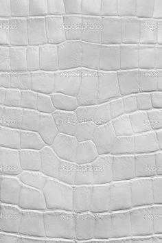 White Leather Texture | White crocodile leather texture | Stock Photo © Maksim Kostenko ...
