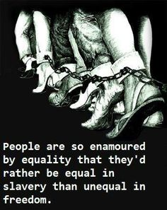 People are so enamoured by equality that they'd rather be equal in slavery than unequal in freedom