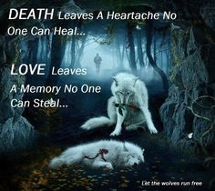 Death leaves a grief that no one can heal. Love leaves a memory that nobody can steal Great Quotes, Me Quotes, Qoutes, Inspirational Quotes, Motivational, Wolf Spirit, Spirit Animal, Wolf Stuff, Wolf Love