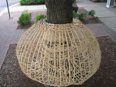 """Basket Bomb by Karen Gubitz, Oak Park IL. """"I've always wanted to Yarn Bomb, your know knitting with yarn on trees, bicycles, telephone poles and other urban objects. But since I began my artistic life as a basket make, it seemed only natural that I'd create Basket Bombs instead. Each of these Basket Bombs is made from basketry reed and is woven using simple basketry techniques. Students from C. Worley's classes at Percy Julian Middle School, Oak Park IL and some of my students helped."""""""