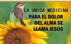 Jesús es la única medicina para el alma