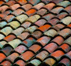 I love using these terracotta tiles as inspiration for terracotta pot ideas during Spring. They are all different colors, chipped away. Reds, aquas, deep blues, bright oranges...what a fun way to brighten up a space!