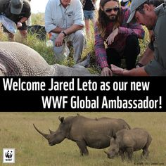 Academy Award-winning actor, musician and director Jared Leto is now a WWF global ambassador. In this role, Leto will work with WWF to raise awareness of the most urgent, critical issues facing our planet.  http://www.worldwildlife.org/stories/academy-award-winning-actor-jared-leto-joins-wwf-as-global-ambassador?utm_campaign=wildlife-ambassadors&utm_medium=social&utm_source=twitter.com
