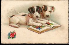Jack Russell Terrier Vtg Postcard Necklace Pewter Silver Soldered Charm Pendant for sale online Fox Terriers, Chien Fox Terrier, Reading Buddies, Vintage Art, Vintage Photos, Illustration Art, Book Illustrations, Kids Story Books, Animals Images