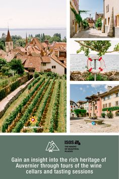 Auvernier, the site of one of the most significant prehistoric finds in Switzerland, is a traditional winemaking village on the shore of Lake Neuchâtel. Switzerland Tourism, Grand Tour, Heritage Site, Prehistoric, Garden Landscaping, Beautiful Places, Tours, Traditional, Landscape