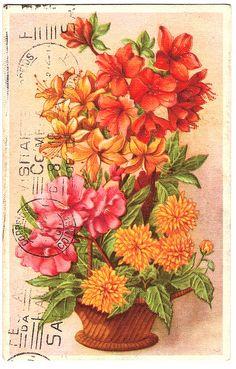 vtg postcard
