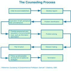 The counseling process.