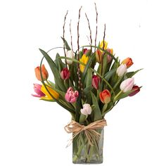 20 Tantilizing Tulips From Soderberg's Floral and Gift