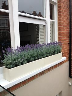 Cream windowboxes filled with faux lavender plants for a fresh spring/sumer look