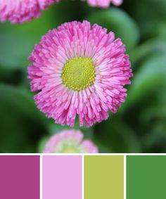 Frühlingsgrün www.farbenergie.com