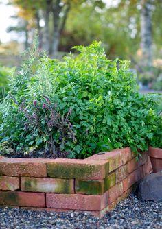 Mura odlingsbädd kryddbädd