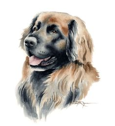 LEONBERGER Dog Watercolor Painting ART Print by k9artgallery   WATERCOLOR   WATERCOLOR