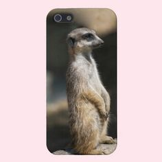 Meerkat Case For iPhone 5