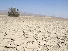 Karakum_Desert.jpg 1,000×750 pixels