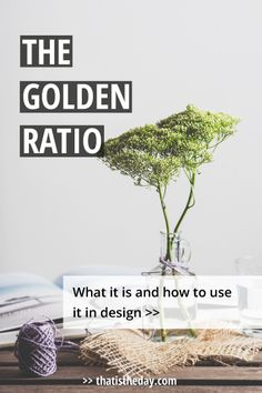 What is the golden ratio and how to use it in design? The golden ratio describes a mathematical rule to build proportions derived from nature | thatistheday.com