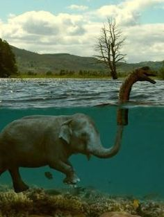 Elephant Humor: Now we understand more about the Loch Ness Monster? Lago Ness, Funny Animals, Cute Animals, Wild Animals, Sneak Attack, Funny Commercials, Loch Ness Monster, The Loch, Elephant Love