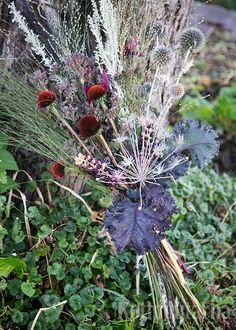 Yhdistä kimppuun hopeamarunaa, ikiviuhkoa, oreganon kukkia, erilaisia koristeheiniä, punahatun mykeröitä, sinipallo-ohdakkeita, kermesmarjaa sekä tähtilaukan kuivuneita siemenkotia ja lehtikaalin tummia lehtiä. Dandelion, Flowers, Plants, Dandelions, Plant, Taraxacum Officinale, Royal Icing Flowers, Flower, Florals