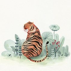 Tigress #kidlitart #watercolor #tiger #illustration