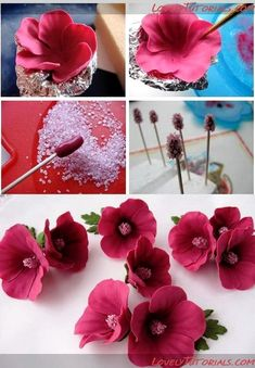 Edible Art, Flowers.
