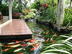 A superb fish pond design will enable the individual to plan a fish pond which is going to be attractive and won't be hard to look after. In the start, you might say you don't need any fish in the pond. Koi Fish Care, Koi Fish Pond, Fish Ponds, Koi Pond Design, Small Garden Design, Ponds Backyard, Backyard Landscaping, Small Water Gardens, Carpe Koi