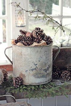 Om sommeren er det blomster som er den store inspirasjonen i mine bilder og om vinteren er det kongler...I alle varianter . Jeg synes de ...