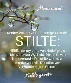 Good Night Blessings, Good Morning Wishes, Evening Greetings, Good Night Friends, Afrikaanse Quotes, Goeie Nag, Good Morning Inspirational Quotes, Special Quotes, Prayer Quotes